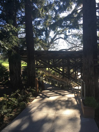 Wooded Path in Memory of Joseph Phelps